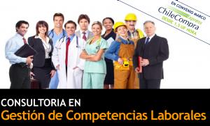 EST - Gestion de competencias laborales