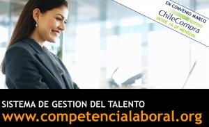 EST - Sistema de Gestion de talento